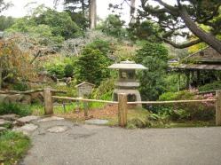 tea-garden-1.jpg