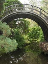 tea-garden-2.jpg